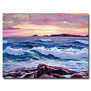 Trademark Fine Art 'California Sunset' 24