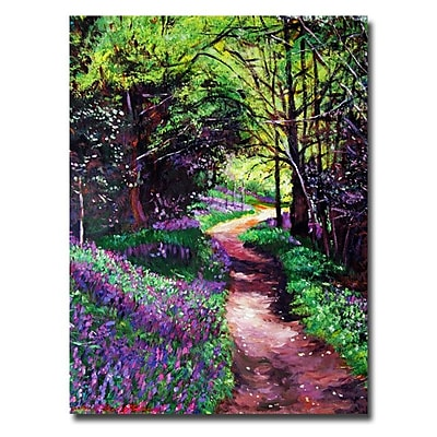 Trademark Fine Art 'Lavendar Lane' 18