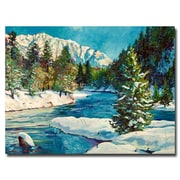 "Trademark Fine Art 'Colorado Pines' 24"" x 32"" Canvas Art"