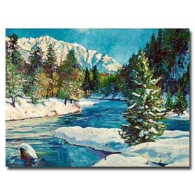 Trademark Fine Art 'Colorado Pines' 35