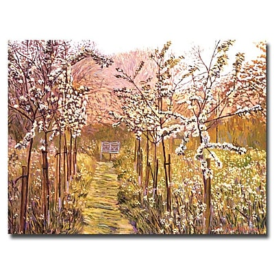 Trademark Fine Art 'Orchard Morning' 18