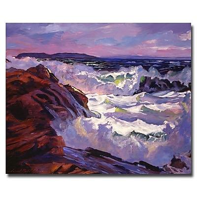 Trademark Fine Art 'Palos Verdes Beach' 35