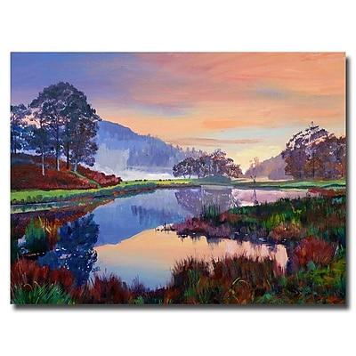 Trademark Fine Art 'Baroque Dawn' 35