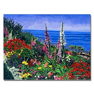 Trademark Fine Art 'Laguna Niguel Summer' 35