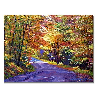 Trademark Fine Art 'New England Road' 24
