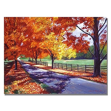 Trademark Fine Art 'October Road' 24