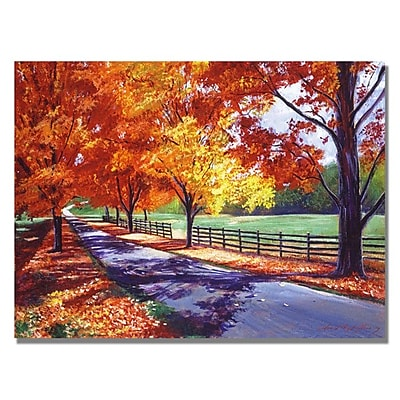 Trademark Fine Art 'October Road' 35
