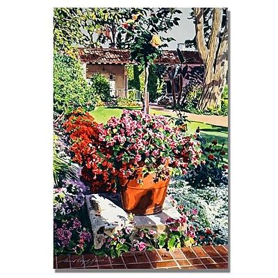 Trademark Fine Art 'Santa Barbra Garden' 35