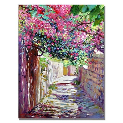 Trademark Fine Art 'Shady Lane Greece' 18