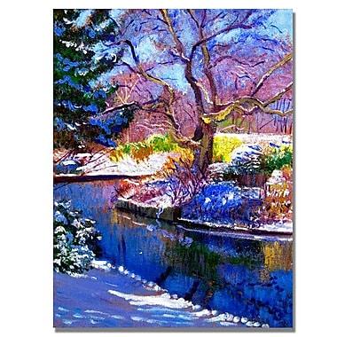 Trademark Fine Art 'Snowy Park' 24