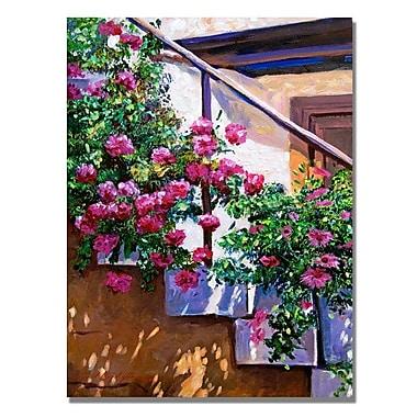 Trademark Fine Art 'Stairway Floral' 35