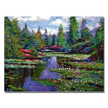 Trademark Fine Art 'Waterlily Lake Reflections' 35