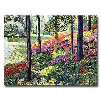 Trademark Fine Art 'Azalea Forest Grove' 18