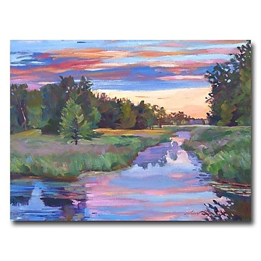 Trademark Fine Art 'Moody River' 26