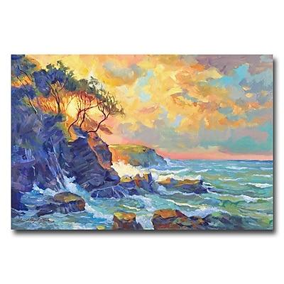 Trademark Fine Art 'Pacific Dawn' 22