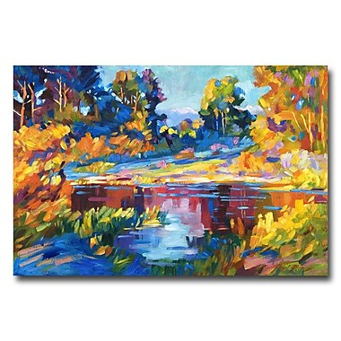 Trademark Fine Art 'Reflections on a Quiet Lake' 22