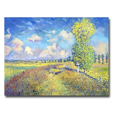 Trademark Fine Art 'Summer Field of Poppies' 35