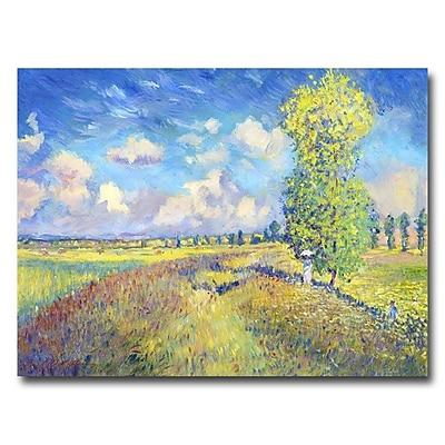 Trademark Fine Art 'Summer Field of Poppies' 18