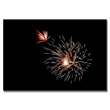 Trademark Fine Art 'Abstract Fireworks 32' 22