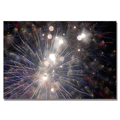 Trademark Fine Art 'Abstract Fireworks 33' 22