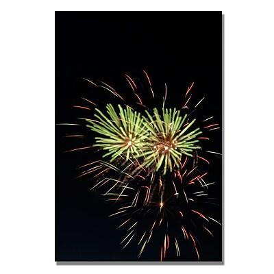 Trademark Fine Art 'Abstract Fireworks 35' 22