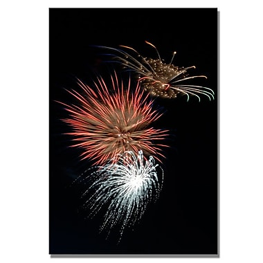 Trademark Fine Art 'Abstract Fireworks 36'