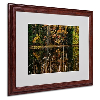 Trademark Fine Art 'Beautiful Memory' 16
