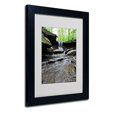 Trademark Fine Art 'Blue Hen Falls in Spring'