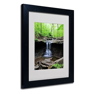 Trademark Fine Art 'Blue Hen Falls' 11