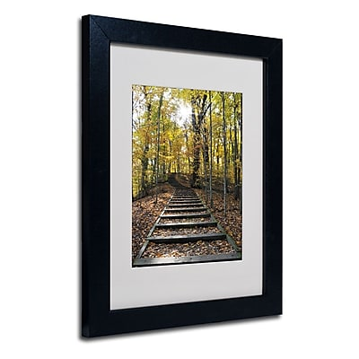 Trademark Fine Art 'Fall Stairway 2' 11