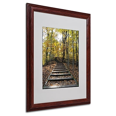 Trademark Fine Art 'Fall Stairway 2' 16
