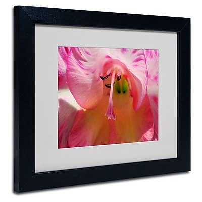 Trademark Fine Art 'Inside a Lily' 11