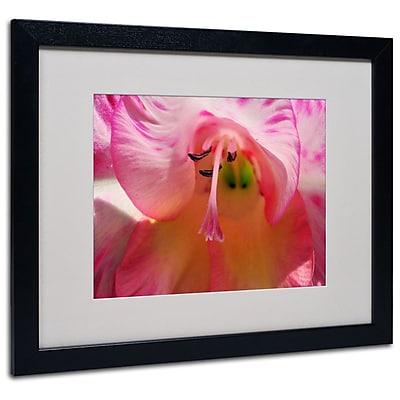 Trademark Fine Art 'Inside a Lily' 16