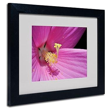 Trademark Fine Art 'Inside a Pink Hibiscus'