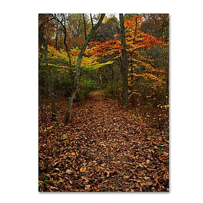 Trademark Fine Art 'Late Autumn Hike' 35