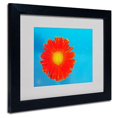 Trademark Fine Art 'Orange and Blue'