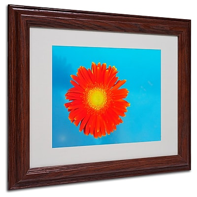 Trademark Fine Art 'Orange and Blue' 11