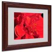 "Trademark Fine Art 'Red Red Hibiscus' 11"" x 14"" Wood Frame Art"