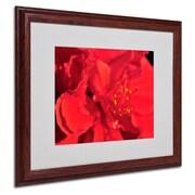 "Trademark Fine Art 'Red Red Hibiscus' 16"" x 20"" Wood Frame Art"