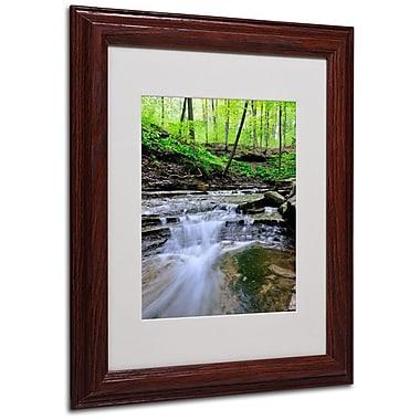 Trademark Fine Art 'Valley Stream' 11