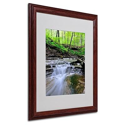 Trademark Fine Art 'Valley Stream' 16