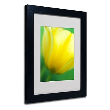 Trademark Fine Art 'Hint of a Tulip'