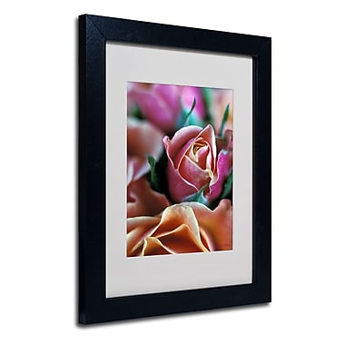 Trademark Fine Art 'Mauve and Peach Roses'
