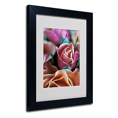 Trademark Fine Art 'Mauve and Peach Roses' 11