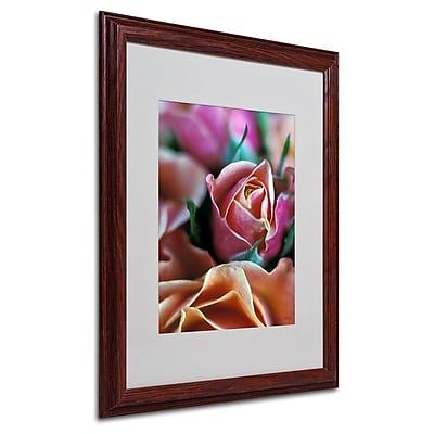 Trademark Fine Art 'Mauve and Peach Roses' 16