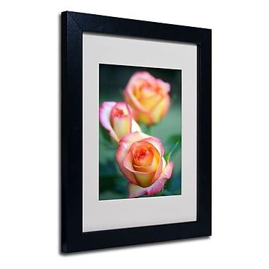 Trademark Fine Art 'Rose Trio'