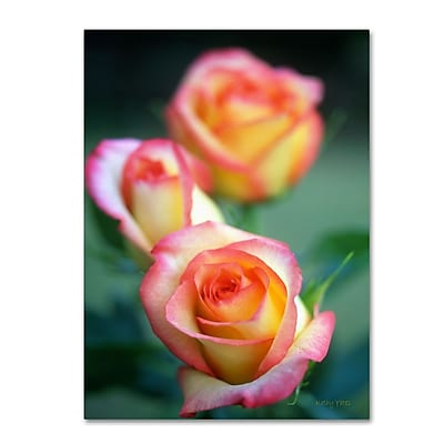 Trademark Fine Art 'Rose Trio' 14
