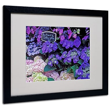 Trademark Fine Art 'Paris Flower Market Hydrangeas' 16