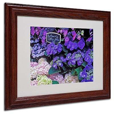 Trademark Fine Art 'Paris Flower Market Hydrangeas' 11