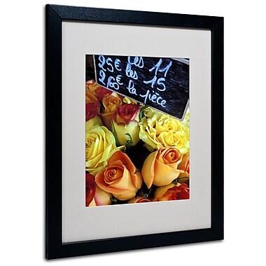 Trademark Fine Art 'Paris Roses' 16